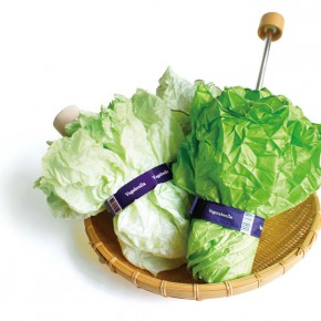 Vegetabrella: A Personal, Portable, Practical Head of Lettuce